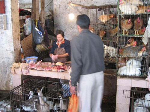 The Poultry Shop